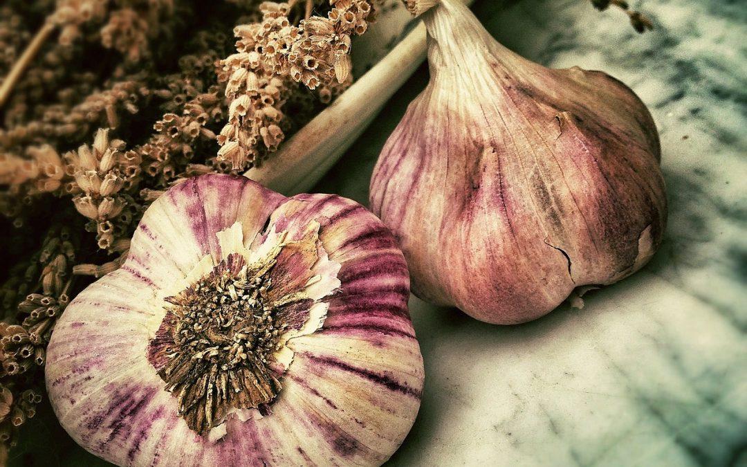 L'ail, un produit à plusieurs vertus